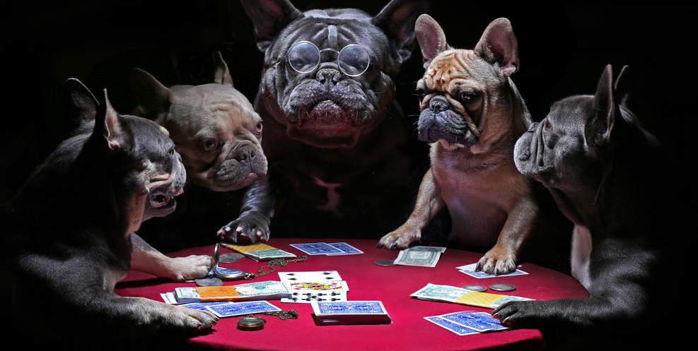 82 of the Funniest Quotes About Gambling